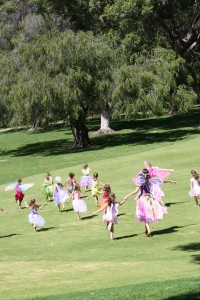 Fairy Races in Kings Park